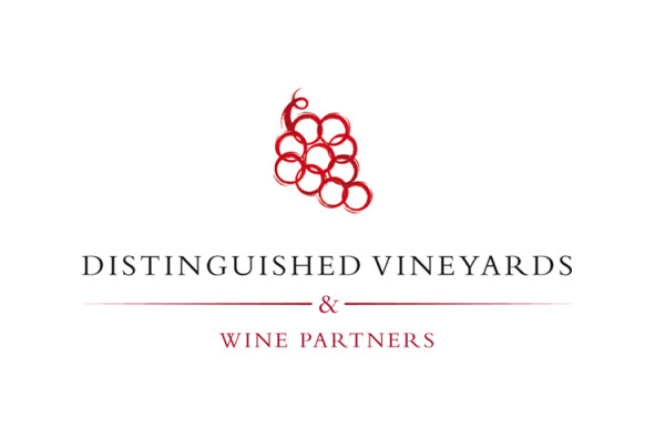 distinguished vineyard